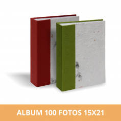 Álbum Diseño Hojas 100 fotos 15X21 cm